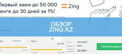 Обзор Zing.kz